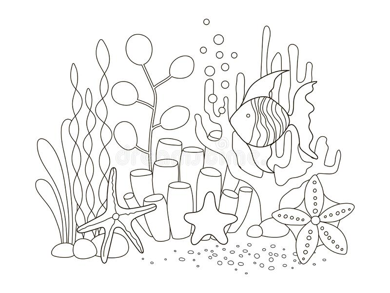 Vector beautiful coloring book for adults and children with fish and marine among algae, starfish and coral. A series of coloring royalty free illustration
