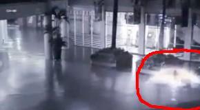 Загадочное крылатое существо на видео